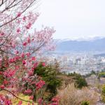 福島の派遣会社ランキング【おすすめ20選】評判・口コミを比較